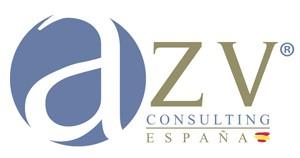 perfil franquiciado azv consulting